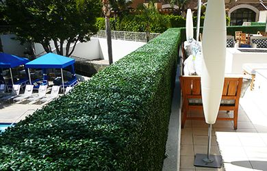 Hedges & Space Dividers
