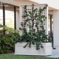 Rolling Trellis Space Divider w/ Outdoor Rated Vines 72inL x 12inW x 72inH