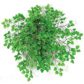 18in. Maidenhair Fern Bush