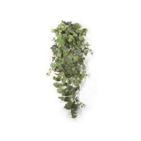 52in. Frosted Grape Bush - Green Mix|Indoor - NFR