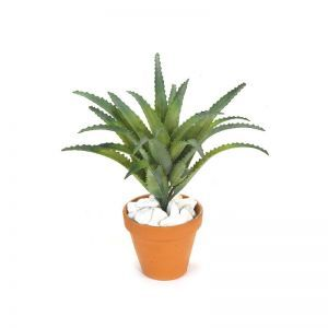 10in. Plastic Aloe Bush - Green|Indoor