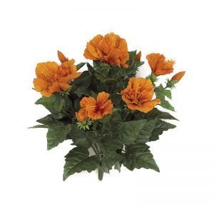 14in. Hibiscus Bush - Orange|Indoor - NFR