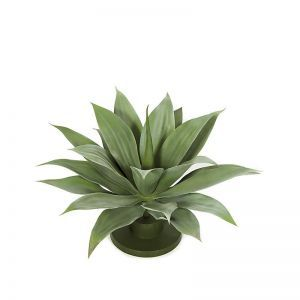 "16"" Artificial Outdoor Rated Agave"