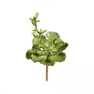 17in. Succulent - Green|Indoor