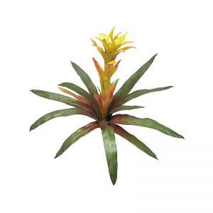 21in. Bromeliad - Orange/Yellow|Indoor - NFR