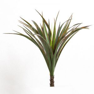 21in. Liriope Bush, Outdoor Rated