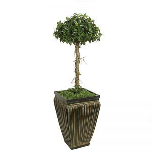 3' Artificial Single Ficus Topiary - Indoor