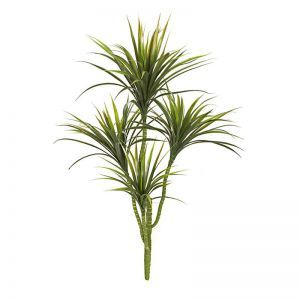 42in. Yucca Head Plant Green/Red|Indoor