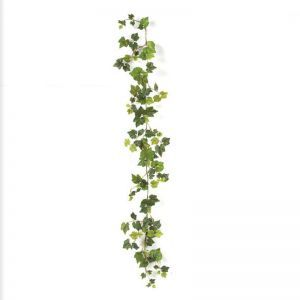 6' Grape Ivy Garland with Natural Stem, Indoor