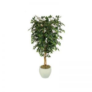 7' Fire Retardant Ficus Tree - Green 1,824 Leaves