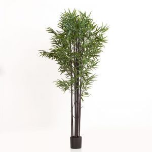 67in. Black Bamboo Cluster in Weighted Base, Indoor Rated