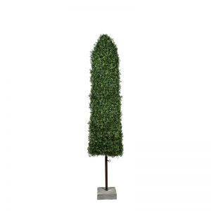 8' Boxwood Obelisk Topiary with Concrete Base - Outdoor