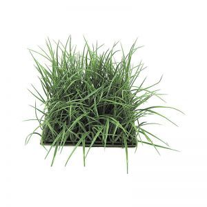 8in.H Tall Wild Grass Mat 10in. Tutone Green - Indoor