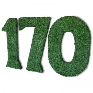 3'H x 6in.W Custom Logo or Letter Boxwood Topiary Shape, Indoor Rated