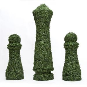 4'H x 18in. SQ Custom Logo or Figure Boxwood Topiary Shape, Indoor Rated