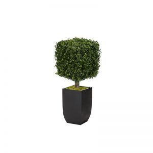 33in.H Duraleaf Boxwood Topiary Cube Tree in Black Metal Planter, Outdoor Rated