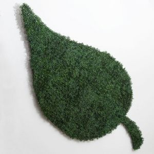 Freeform Bespoke Living Wall Shapes - Indoor