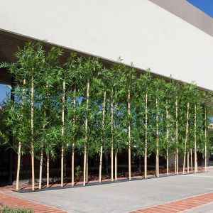 4'L Bamboo Artificial Outdoor Grove- Three Heights Available!