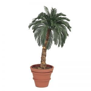 5' Artificial Cycas Palm  48 Fronds, Outdoor Rated