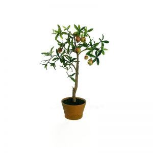 31in. Pomegranate Tree