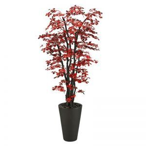 7' Red/Black Olive Tree in Round Resin Planter