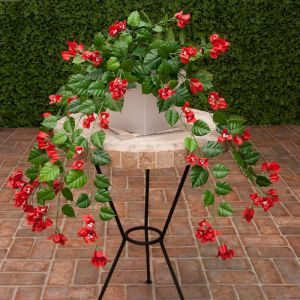 3' Red Fire Retardant Bougainvillea Bush