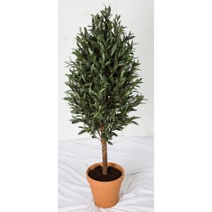 5' Outdoor Artificial Olive Tree with Natural Trunk