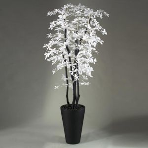 7' White/Black Olive Tree in Resin Planter