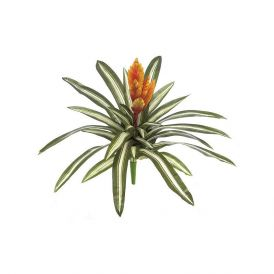 18in. Chantinii - Orange/Red, Indoor