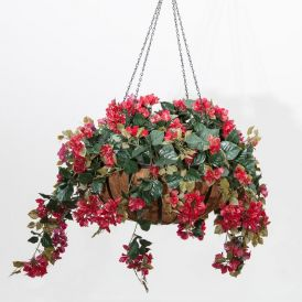 Bougainvillea in 22in Hanging Basket, Outdoor Rated