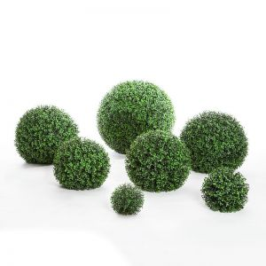 Ornamental Boxwood Topiary Spheres, Outdoor
