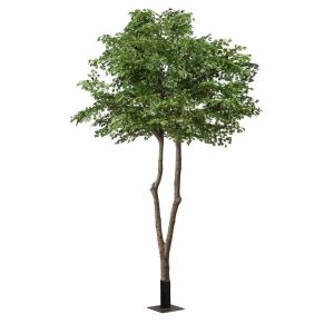 UV Rated Oak Tree with Natural Trunk