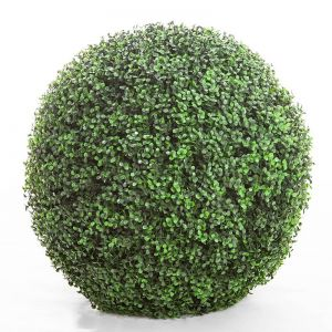 21in. Ornamental Boxwood Topiary Ball - Outdoor