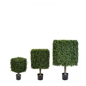 Duraleaf Boxwood Topiary Cubes, Outdoor