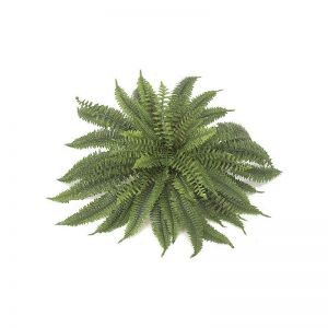45in. Boston Fern - Green|Indoor