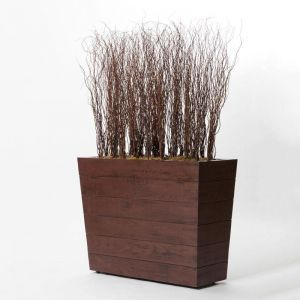 Curly Willow Screen in Madera Planter, Indoor