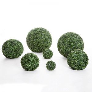 Boxwood Topiary Spheres, Indoor