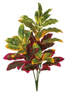 34in. Colorful Outdoor Rated Croton Bush