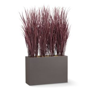 Fountain Grass Shrub Dividers, Outdoor