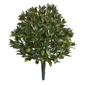 24in. Rhododendron Bush, Outdoor