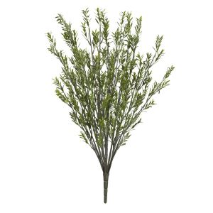 29in. Rosemary Bush, Outdoor