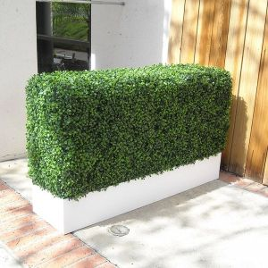 Boxwood Indoor Artificial Hedge in Modern Planter 48in.L x 12in.W
