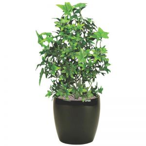 18in. Artificial English Ivy Bush