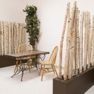 Birch Pole Screen with Planter, Indoor