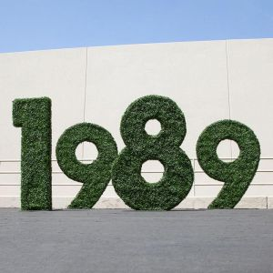 Letter / Number / Logo Boxwood Topiary Shape, Outdoor