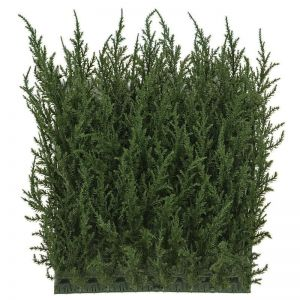 Cypress Hedge Wall Mat 10in. Square - Outdoor