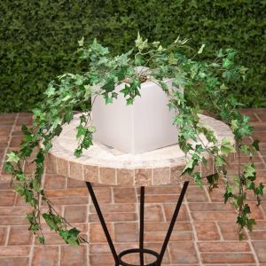 38in. English Ivy Bush, Fire Retardant