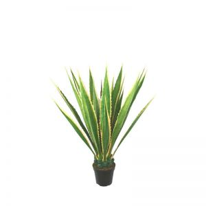 48in. Giant Agave Plant