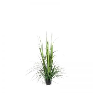 4' or 6' Grass Bush