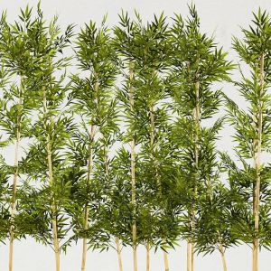 6'L Bamboo Artificial Indoor Grove- Three Heights Available!